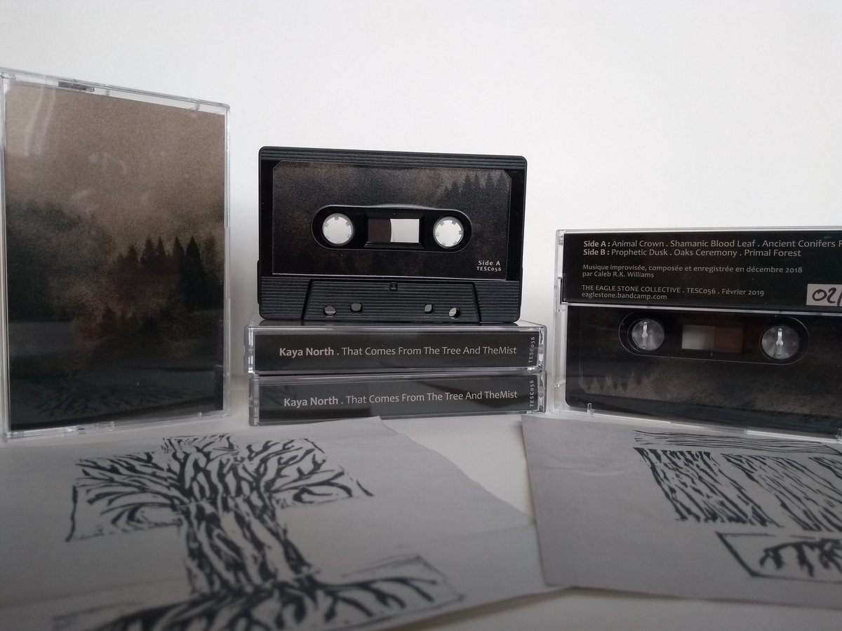 Reviews Archives - This Is Darkness